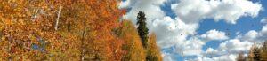 Herbst und so (c) Pixabay - Ausschnitt